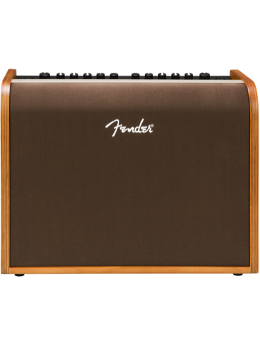 Fender Acoustic 100 Combo Amp